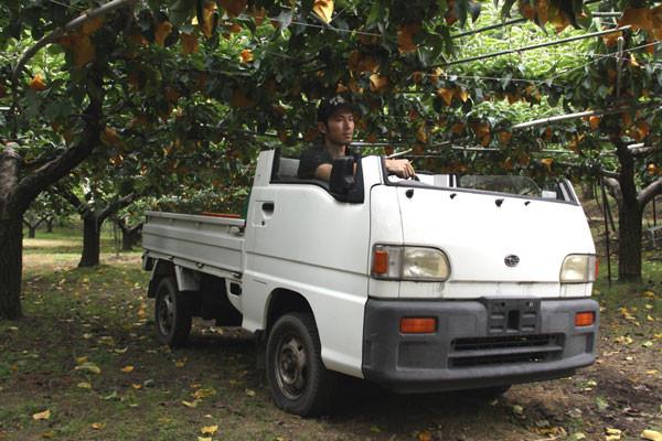 果樹園軽トラ