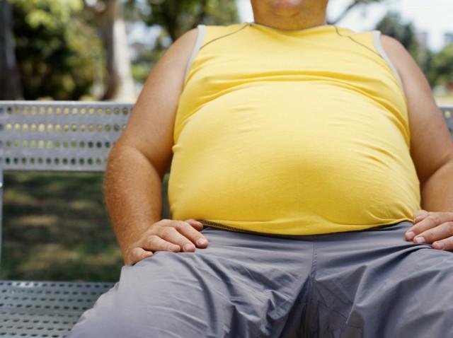 雪印メグミルク 乳酸菌では世界初! 内臓脂肪低減効果をヒト試験により科学的に立証