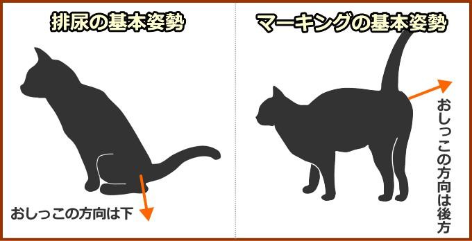 猫のおしっこ