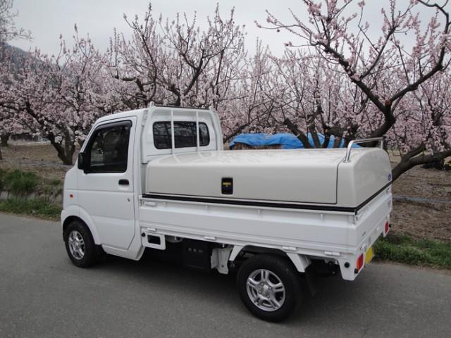 トラボと杏花